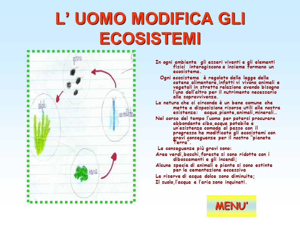 L' UOMO MODIFICA GLI ECOSISTEMI