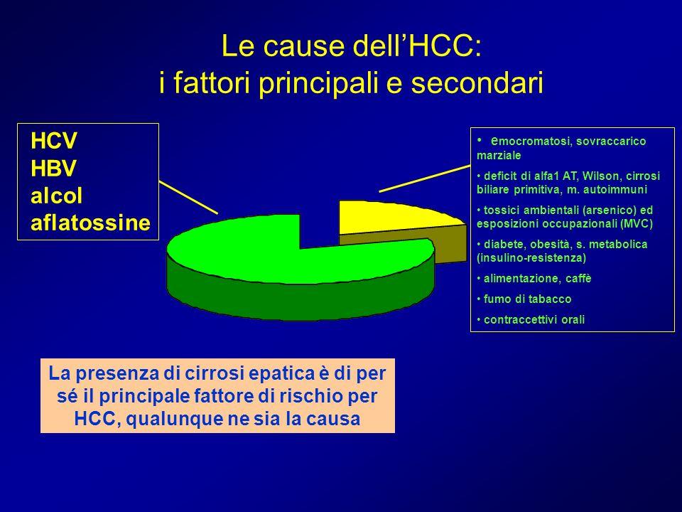 Le cause dell'HCC: i fattori principali e secondari