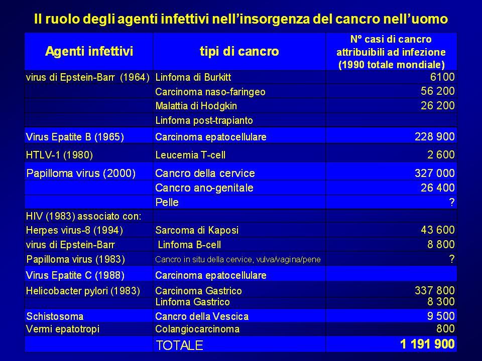 Il ruolo degli agenti infettivi nell'insorgenza del cancro nell'uomo