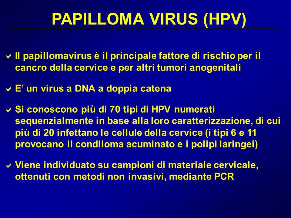 PAPILLOMA VIRUS (HPV) Il papillomavirus è il principale fattore di rischio per il cancro della cervice e per altri tumori anogenitali.