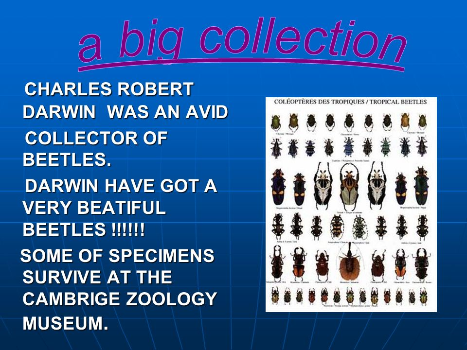 CHARLES ROBERT DARWIN WAS AN AVID