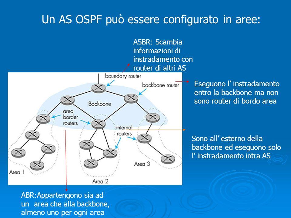 Un AS OSPF può essere configurato in aree: