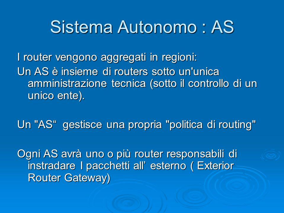 Sistema Autonomo : AS I router vengono aggregati in regioni: