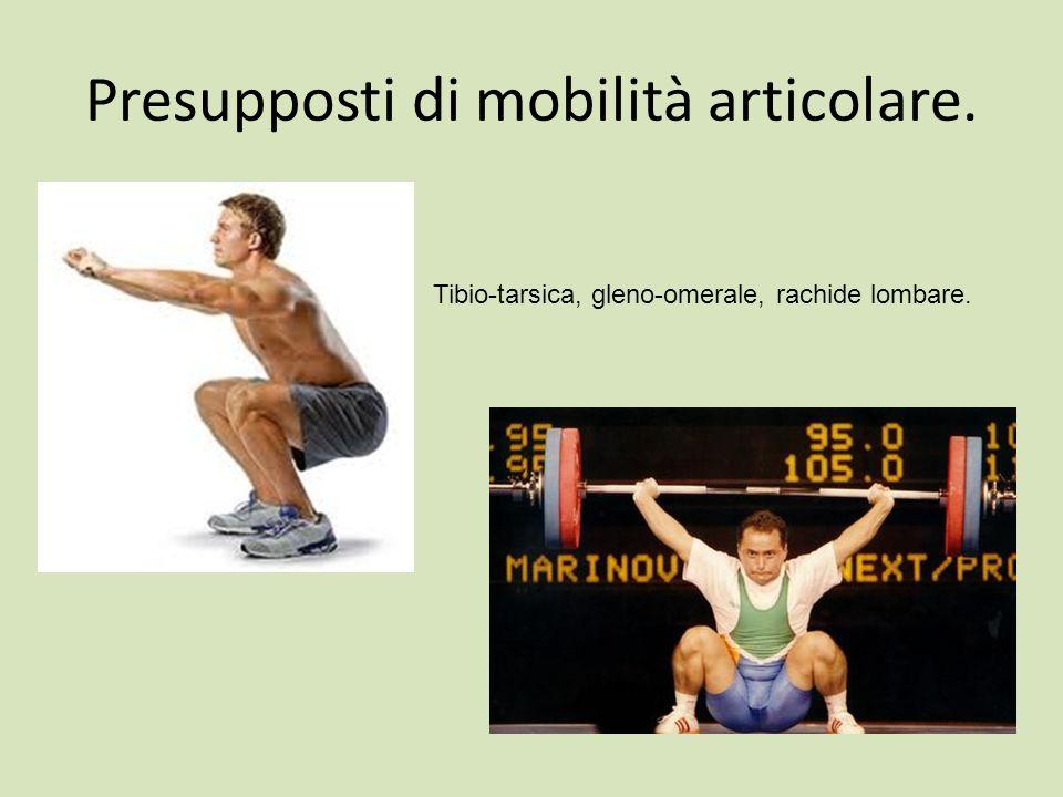 Presupposti di mobilità articolare.
