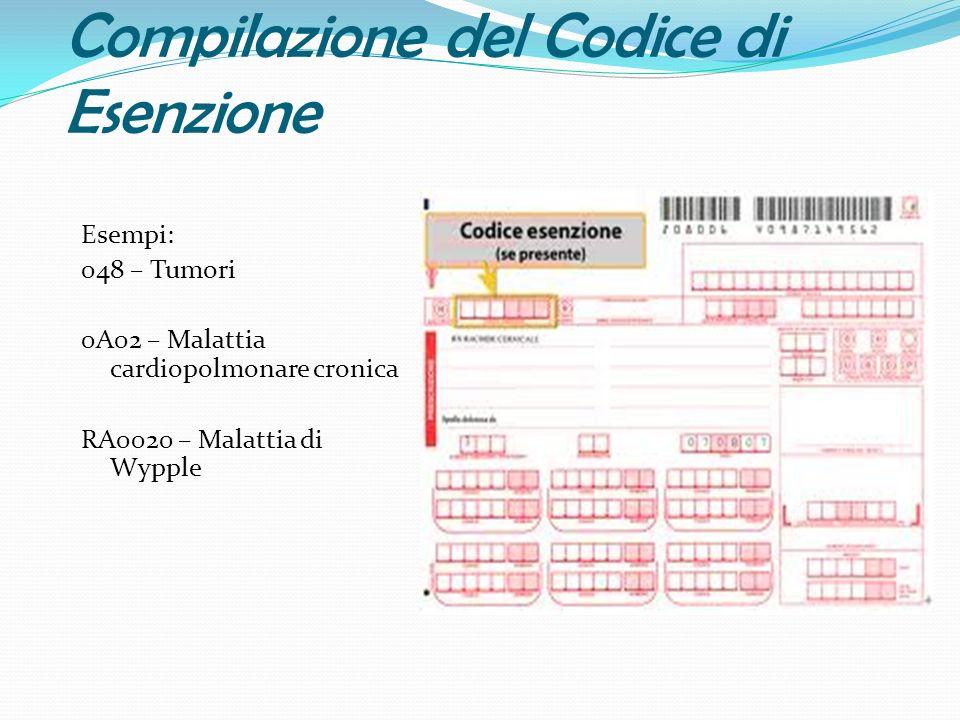 Compilazione del Codice di Esenzione