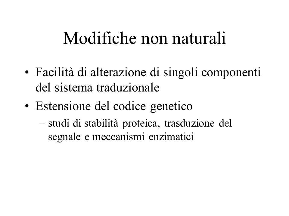 Modifiche non naturali
