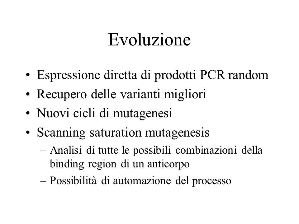 Evoluzione Espressione diretta di prodotti PCR random