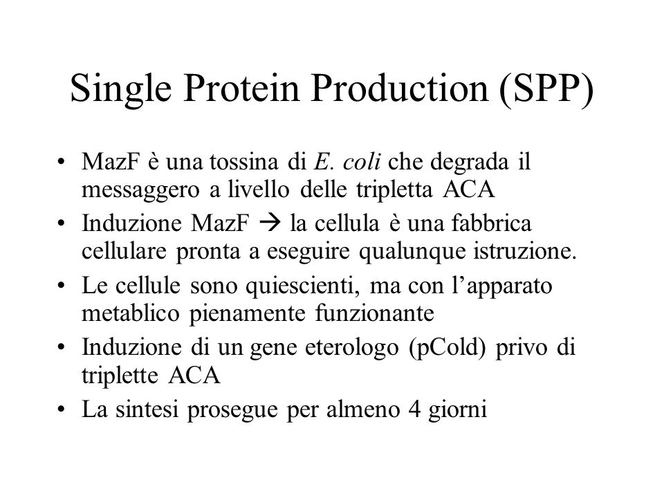 Single Protein Production (SPP)