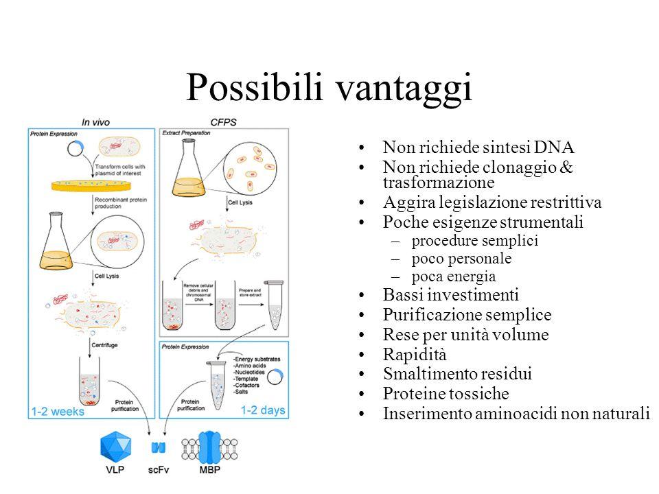 Possibili vantaggi Non richiede sintesi DNA