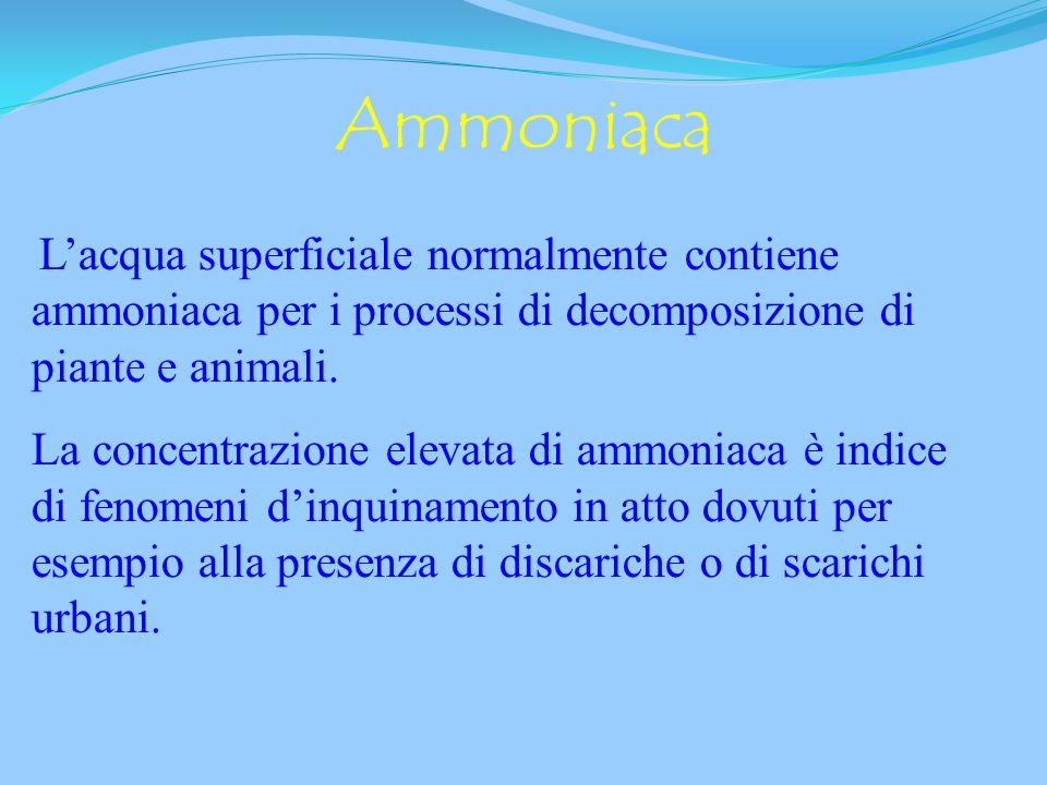AmmoniacaL'acqua superficiale normalmente contiene ammoniaca per i processi di decomposizione di piante e animali.