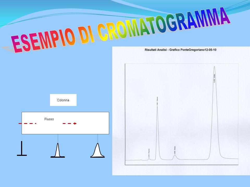 ESEMPIO DI CROMATOGRAMMA