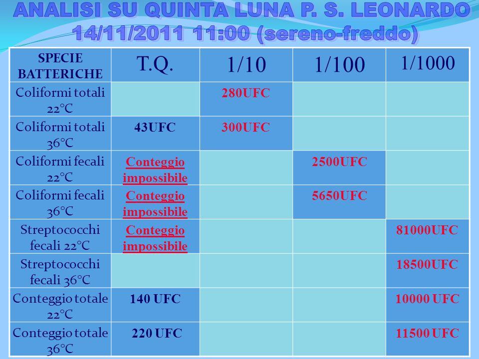 ANALISI SU QUINTA LUNA P. S. LEONARDO Conteggio impossibile