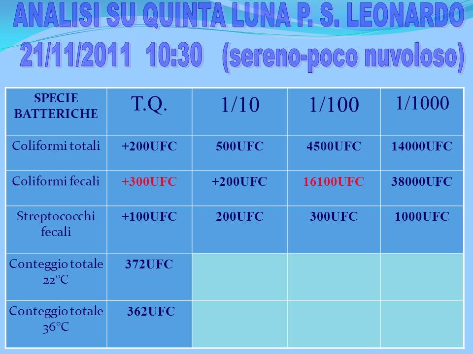 ANALISI SU QUINTA LUNA P. S. LEONARDO