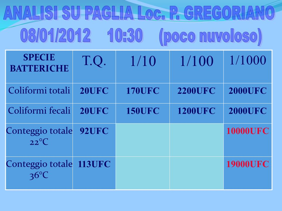 ANALISI SU PAGLIA Loc. P. GREGORIANO