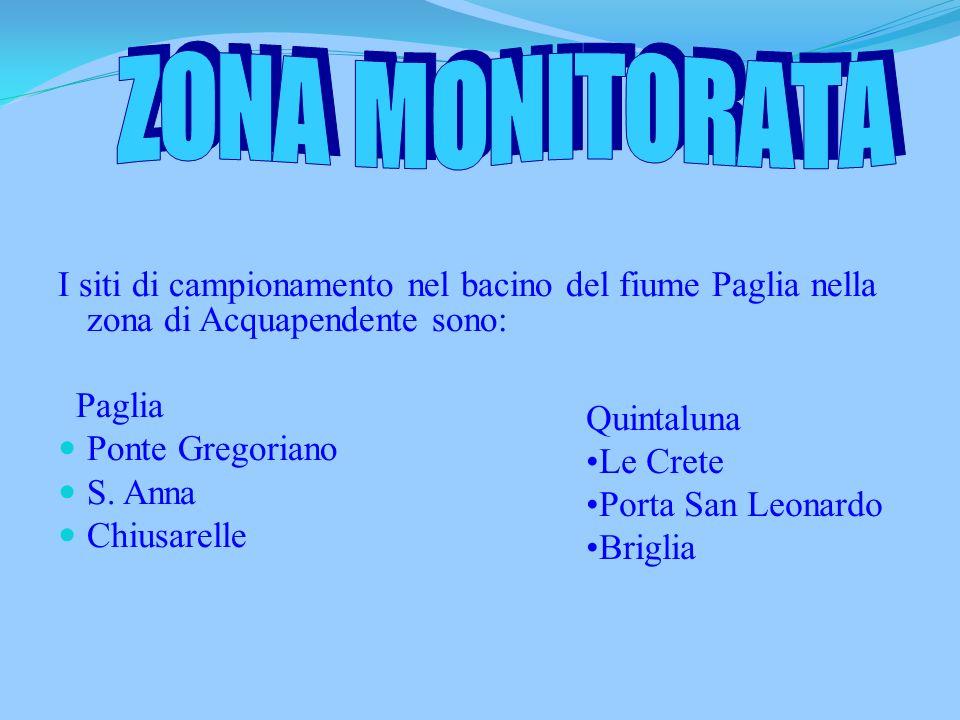 Z O N A M O N I T O R A T A I siti di campionamento nel bacino del fiume Paglia nella zona di Acquapendente sono: