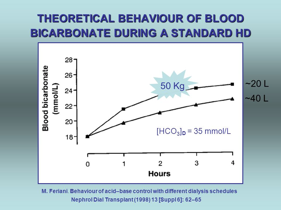THEORETICAL BEHAVIOUR OF BLOOD BICARBONATE DURING A STANDARD HD