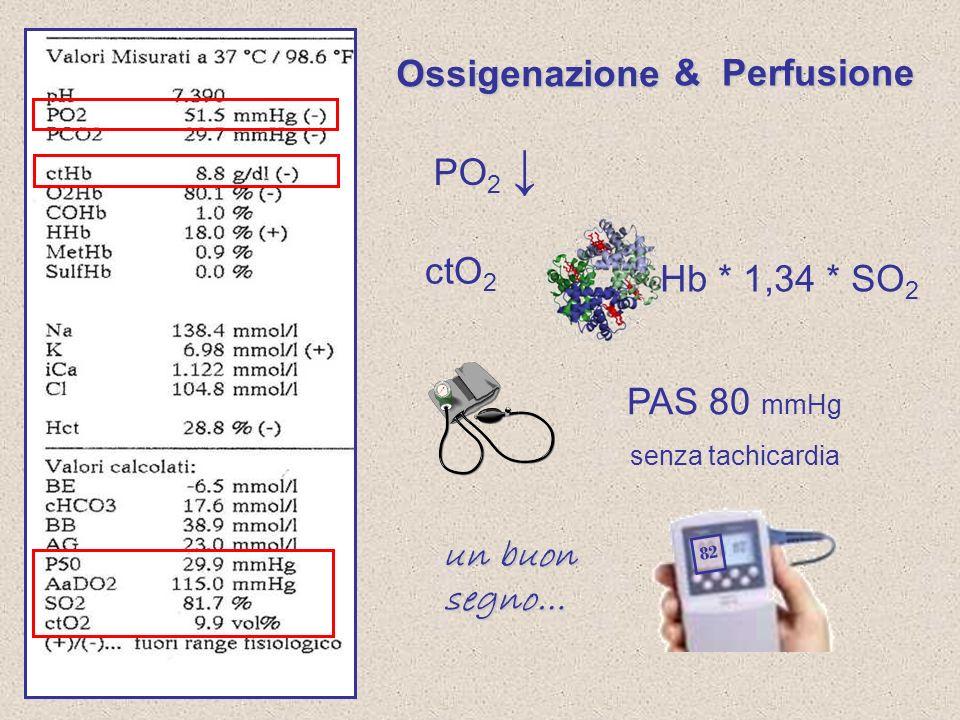Ossigenazione & Perfusione PO2 ↓ ctO2 Hb * 1,34 * SO2 PAS 80 mmHg