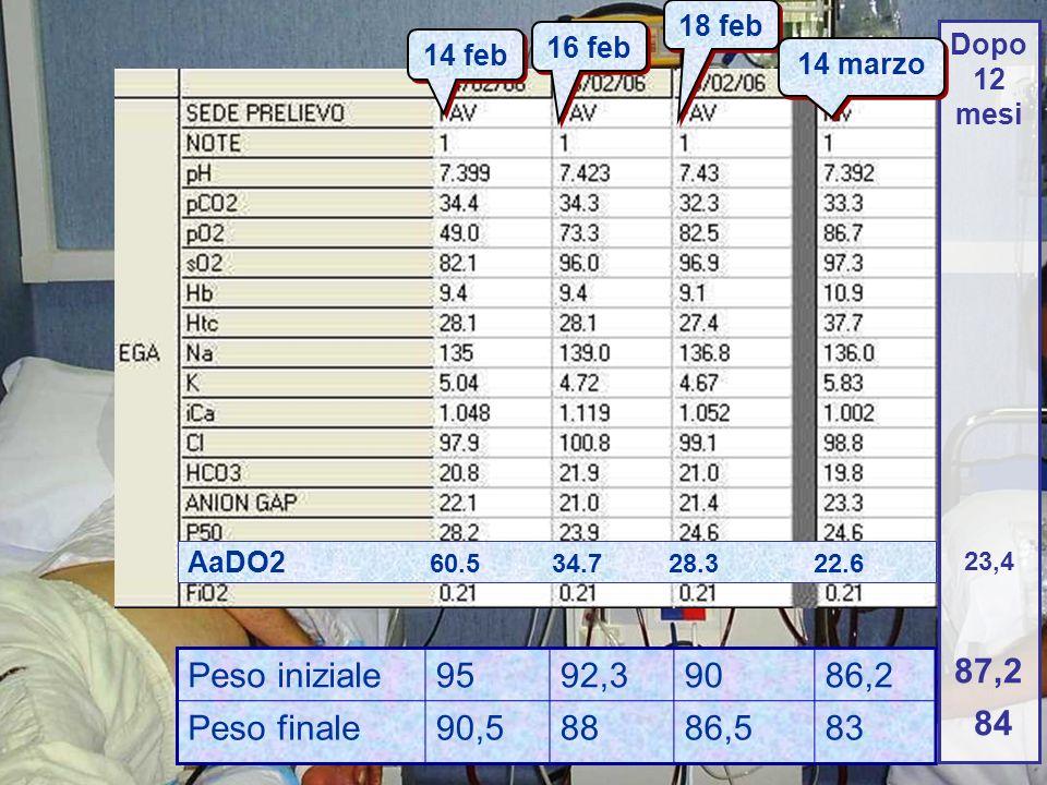 84 87,2 Peso iniziale 95 92,3 90 86,2 Peso finale 90,5 88 86,5 83