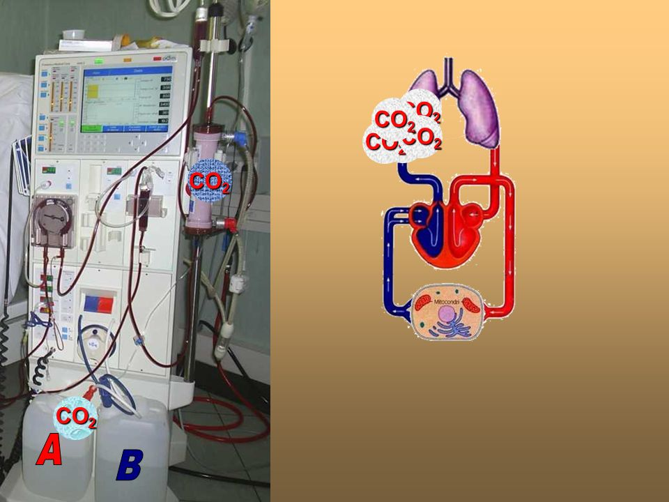 A B. CO2. CO2. CO2. CO2. CO2. CO2. CO2.
