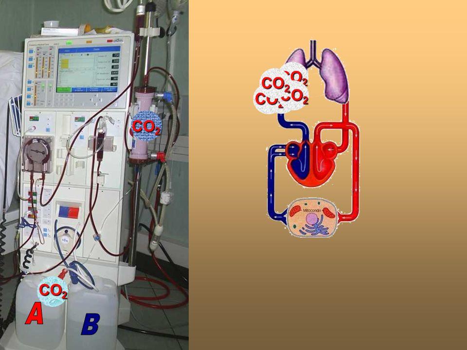 AB. CO2. CO2. CO2. CO2. CO2. CO2. CO2.