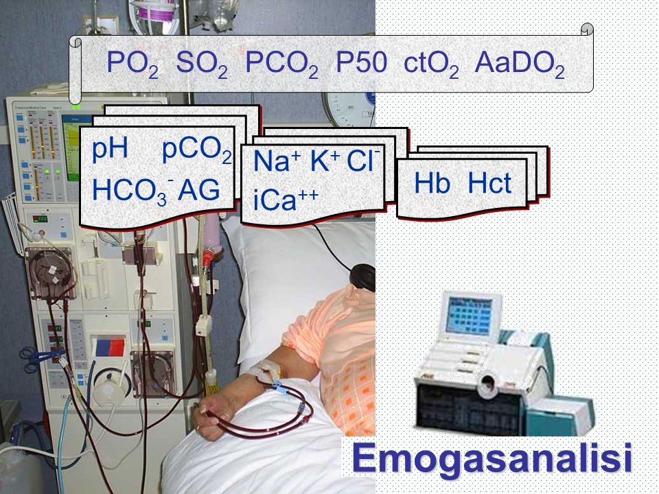 Emogasanalisi PO2 SO2 PCO2 P50 ctO2 AaDO2 pH pCO2 HCO3- AG Na+ K+ Cl-
