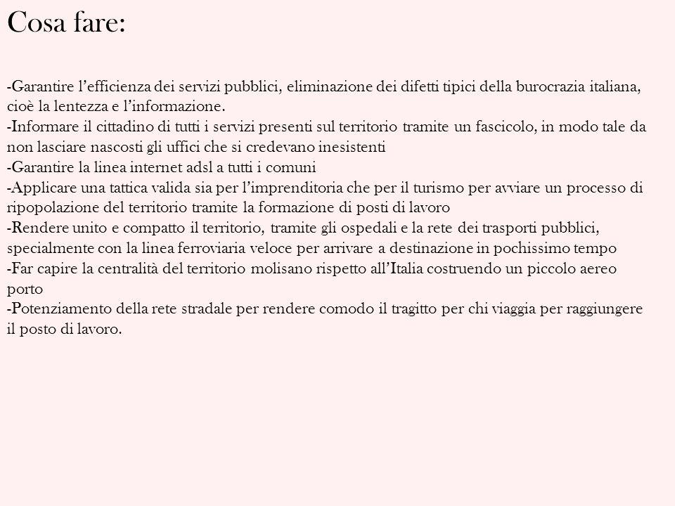 Cosa fare: Garantire l'efficienza dei servizi pubblici, eliminazione dei difetti tipici della burocrazia italiana, cioè la lentezza e l'informazione.