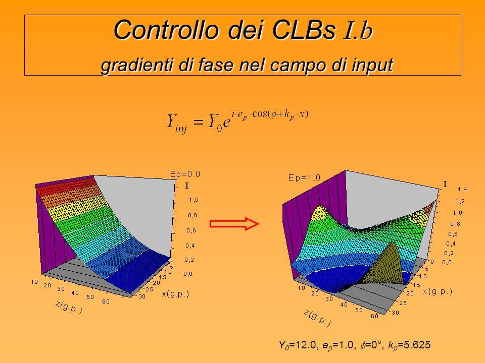 Controllo dei CLBs I.b gradienti di fase nel campo di input