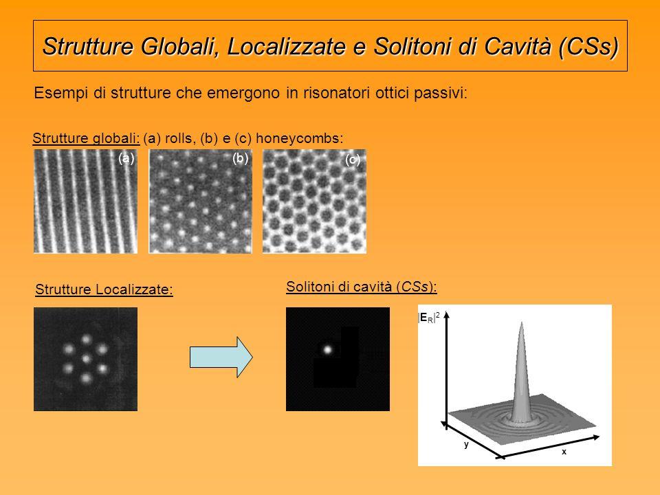 Strutture Globali, Localizzate e Solitoni di Cavità (CSs)