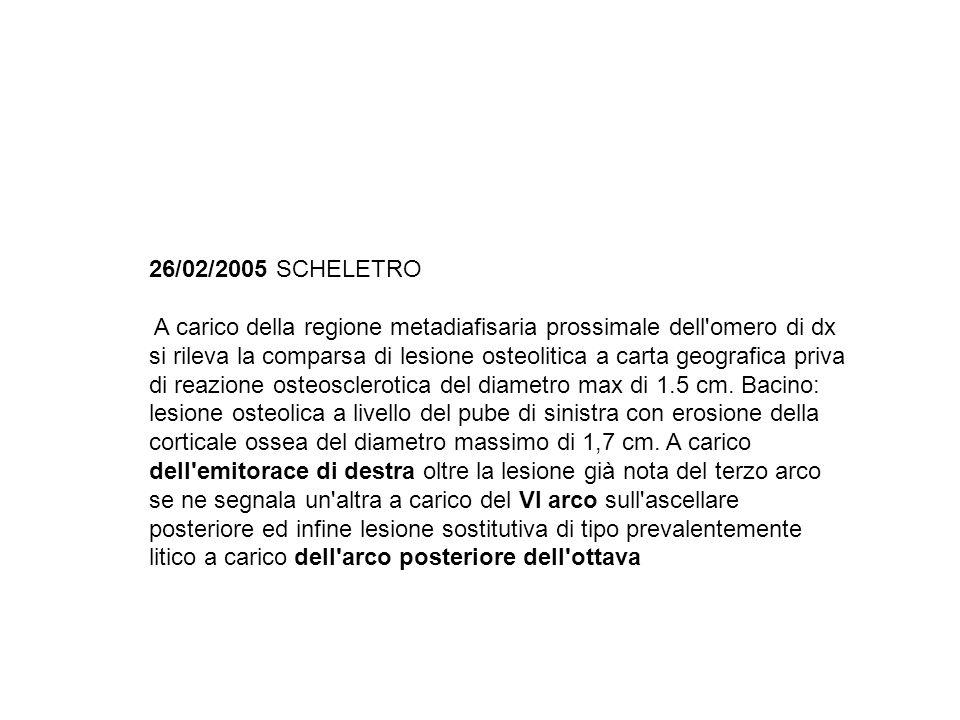 26/02/2005 SCHELETRO