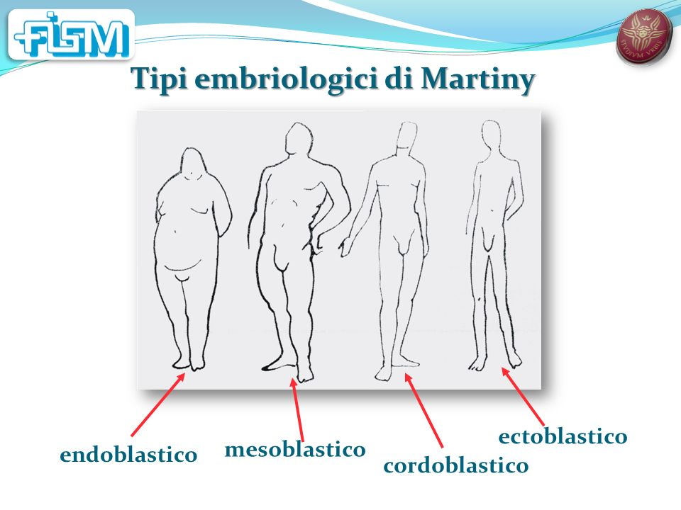 Tipi embriologici di Martiny