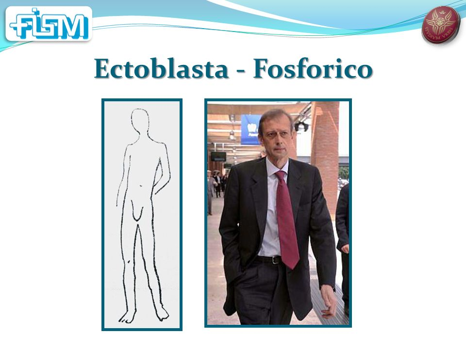 Ectoblasta - Fosforico
