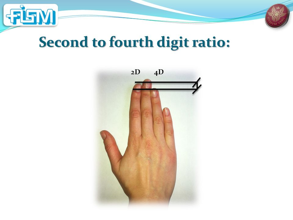 Second to fourth digit ratio: