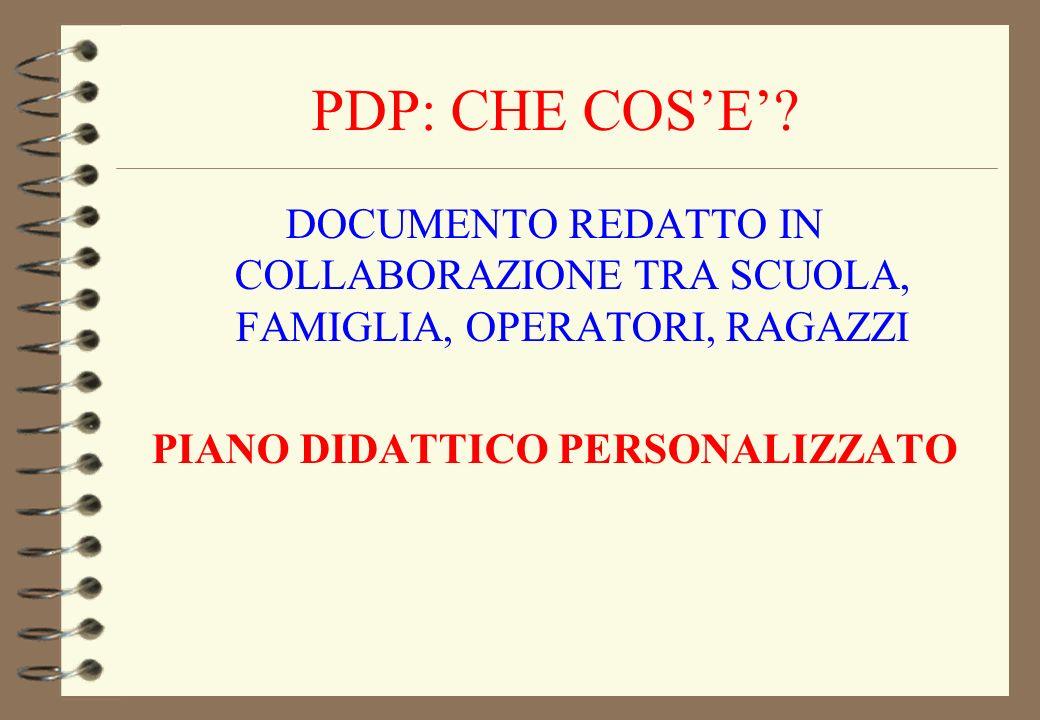 PDP: CHE COS'E'.