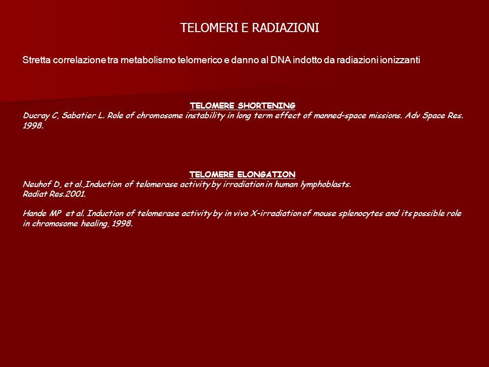 TELOMERI E RADIAZIONIStretta correlazione tra metabolismo telomerico e danno al DNA indotto da radiazioni ionizzanti.