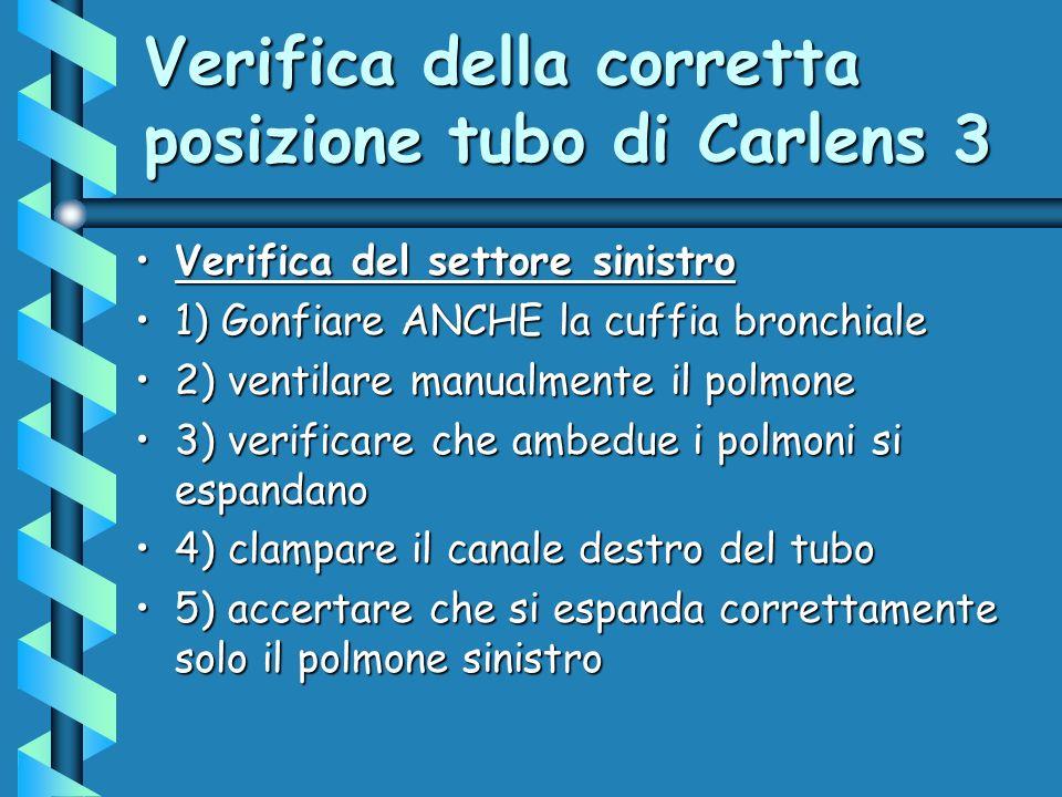 Verifica della corretta posizione tubo di Carlens 3