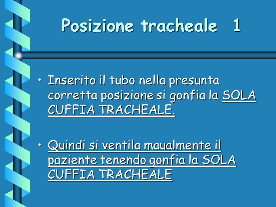Posizione tracheale 1 Inserito il tubo nella presunta corretta posizione si gonfia la SOLA CUFFIA TRACHEALE.
