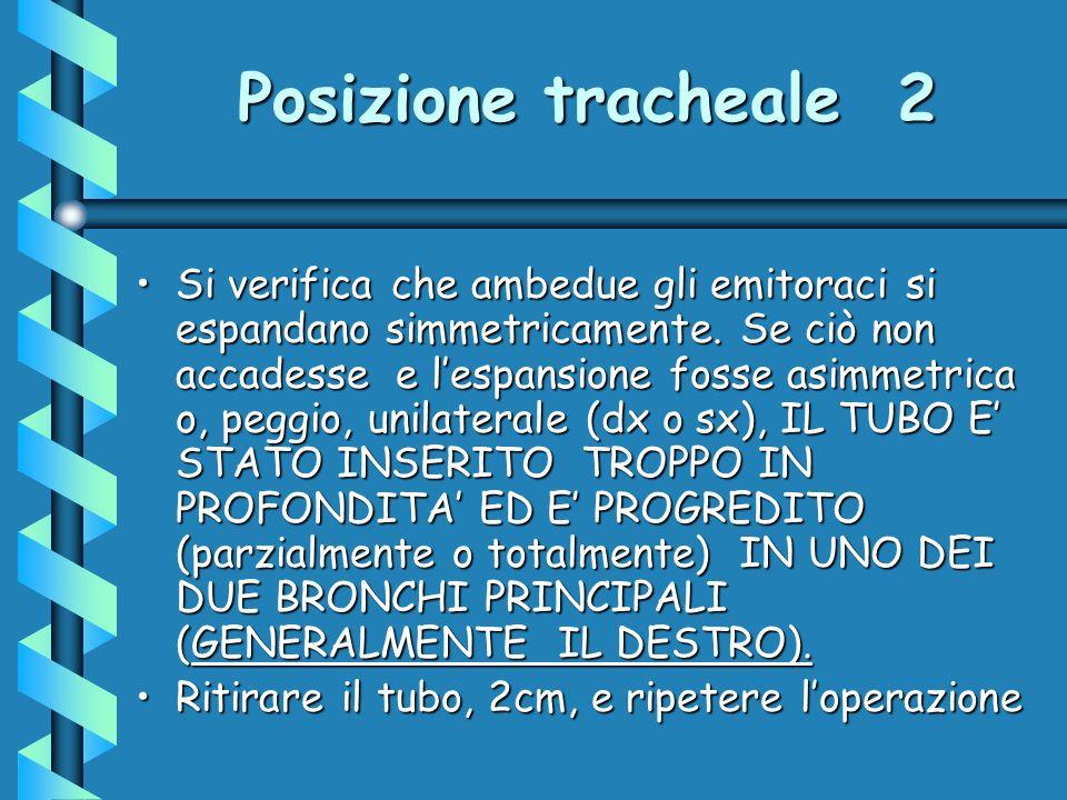 Posizione tracheale 2