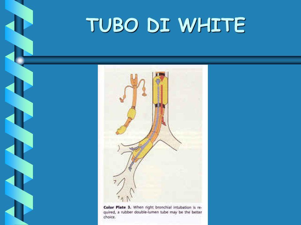 TUBO DI WHITE