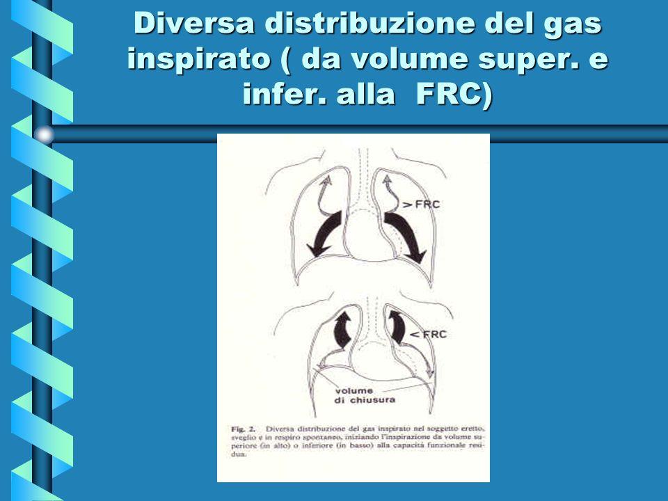Diversa distribuzione del gas inspirato ( da volume super. e infer