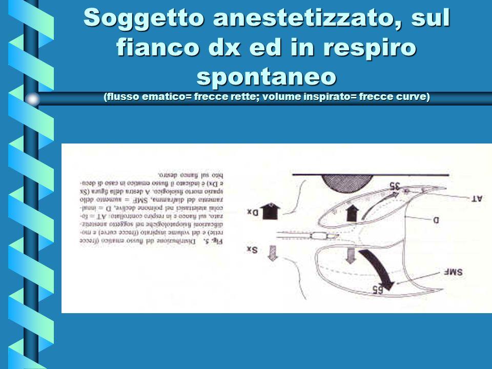 Soggetto anestetizzato, sul fianco dx ed in respiro spontaneo (flusso ematico= frecce rette; volume inspirato= frecce curve)