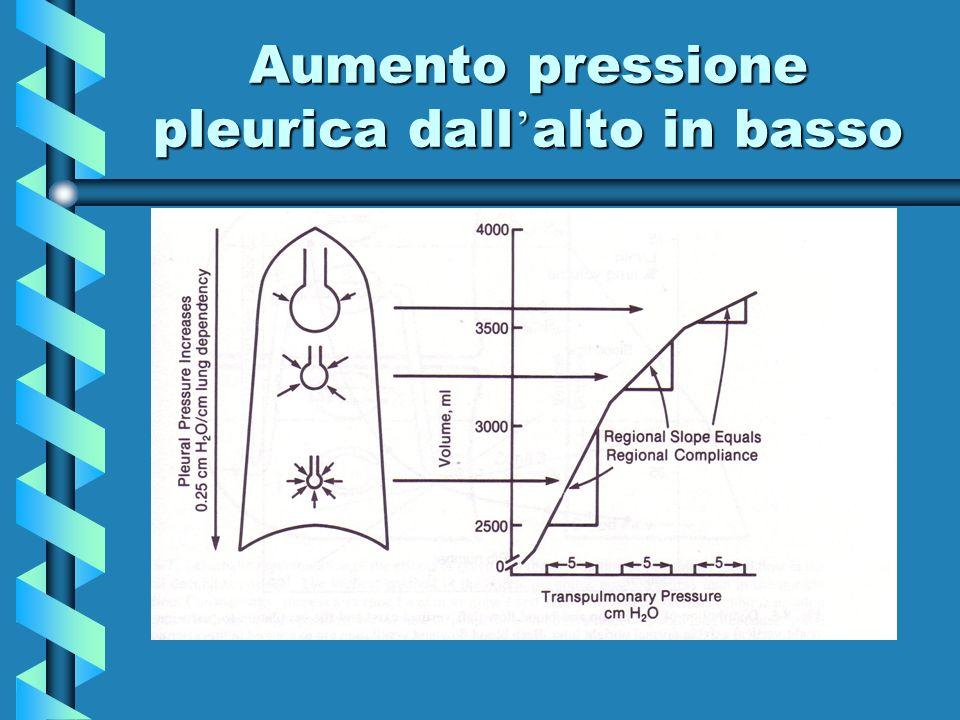 Aumento pressione pleurica dall'alto in basso