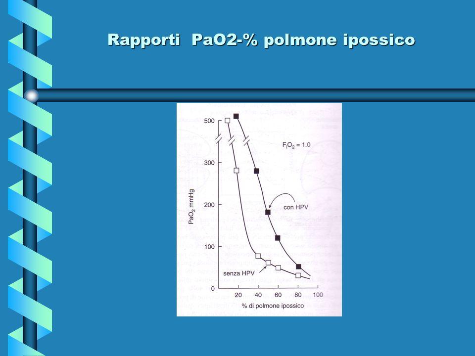 Rapporti PaO2-% polmone ipossico