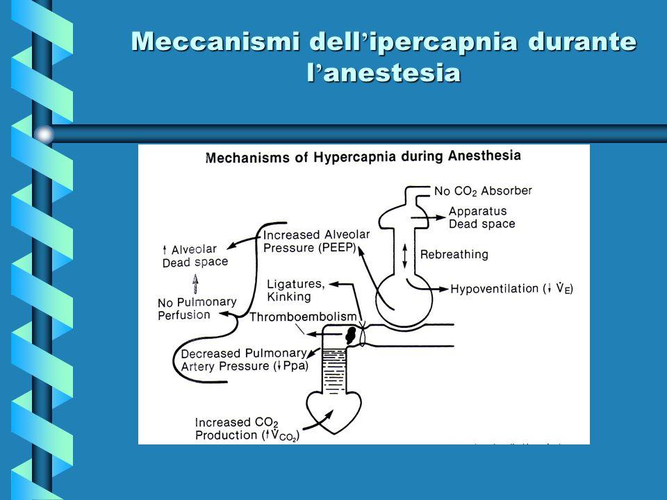 Meccanismi dell'ipercapnia durante l'anestesia