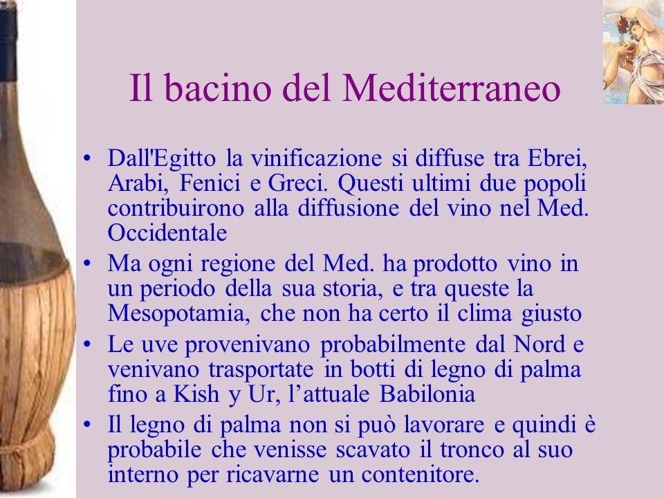 Il bacino del Mediterraneo