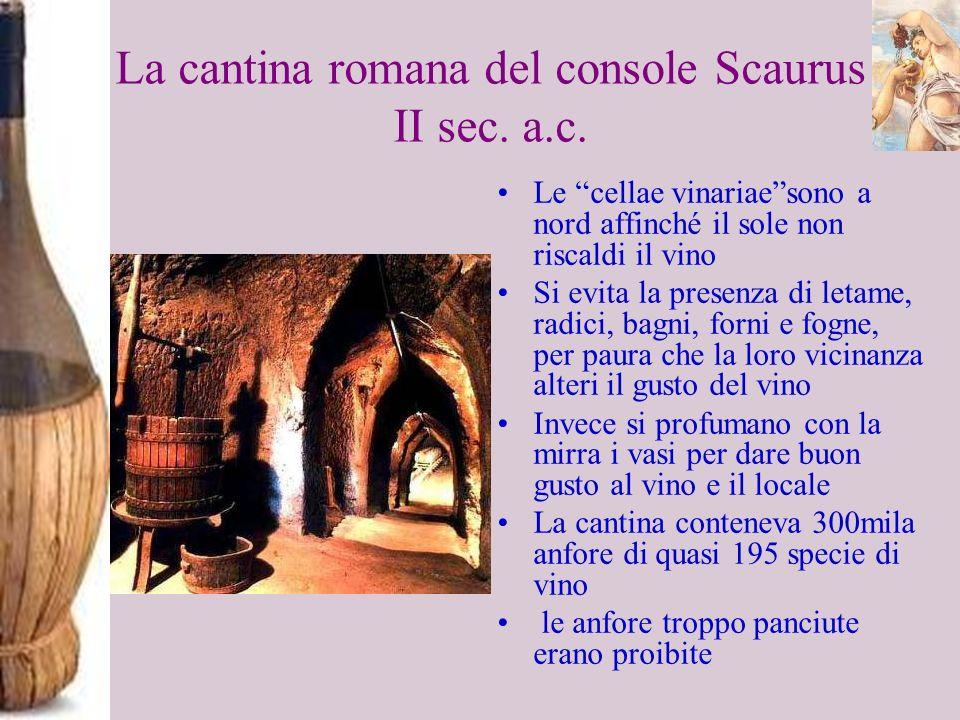 La cantina romana del console Scaurus II sec. a.c.