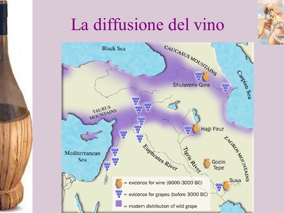 La diffusione del vino