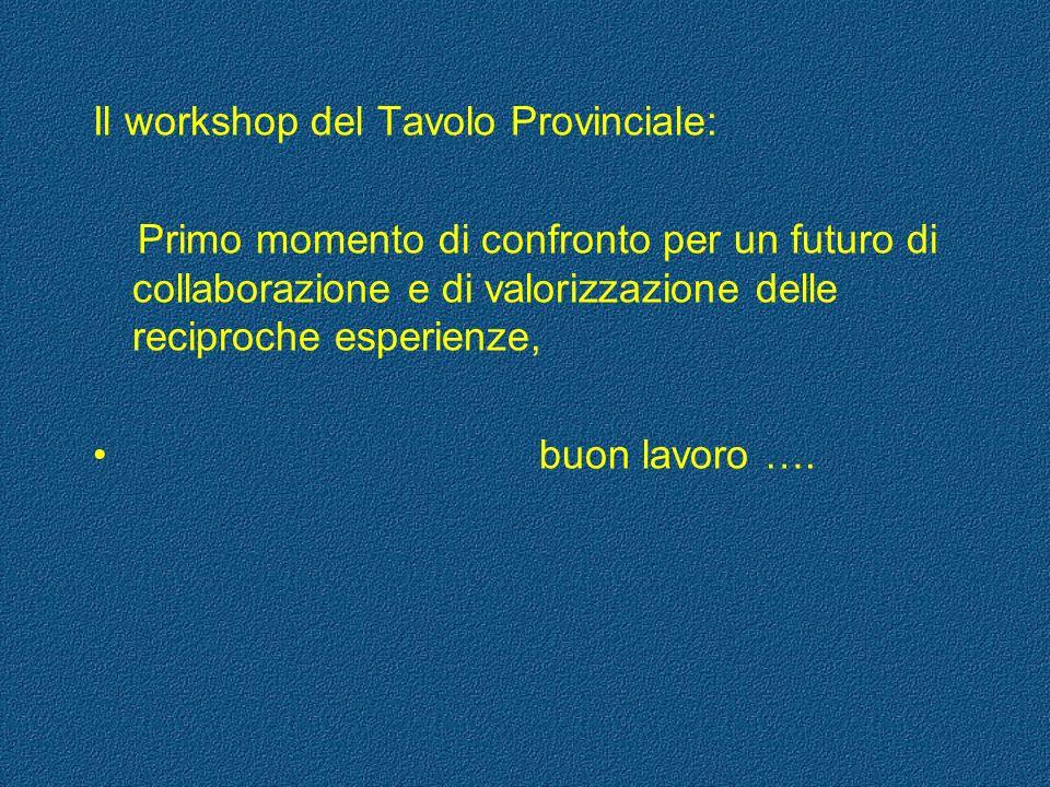 Il workshop del Tavolo Provinciale: