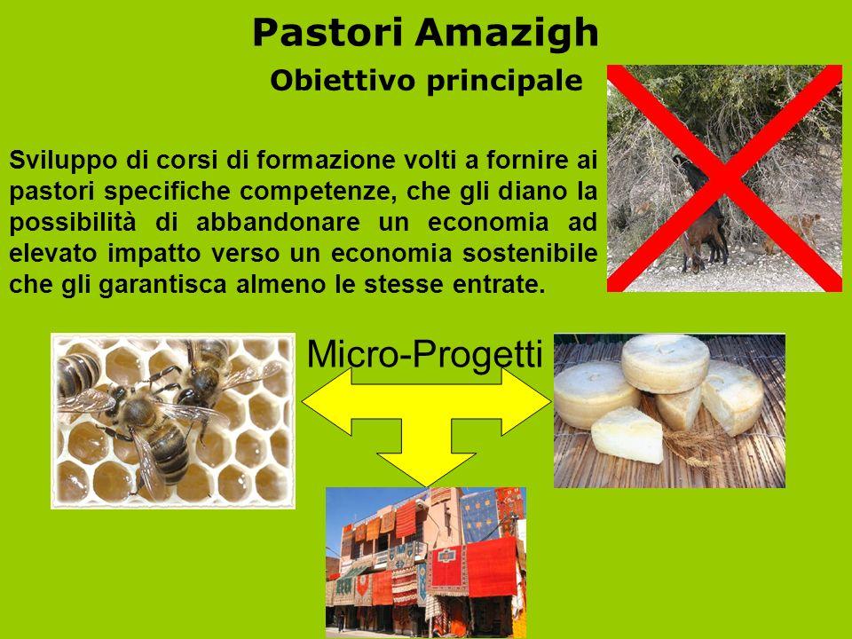 Pastori Amazigh Micro-Progetti Obiettivo principale
