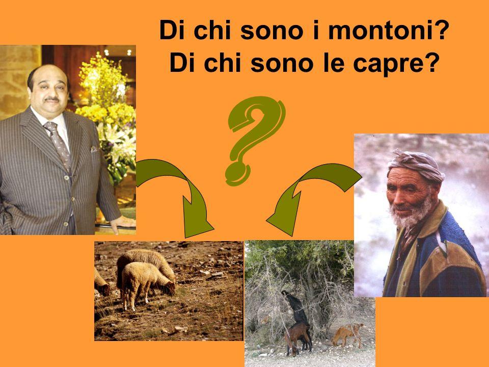 Di chi sono i montoni Di chi sono le capre
