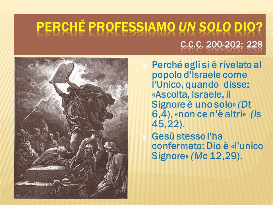 Perché professiamo un solo Dio c.c.c. 200-202; 228